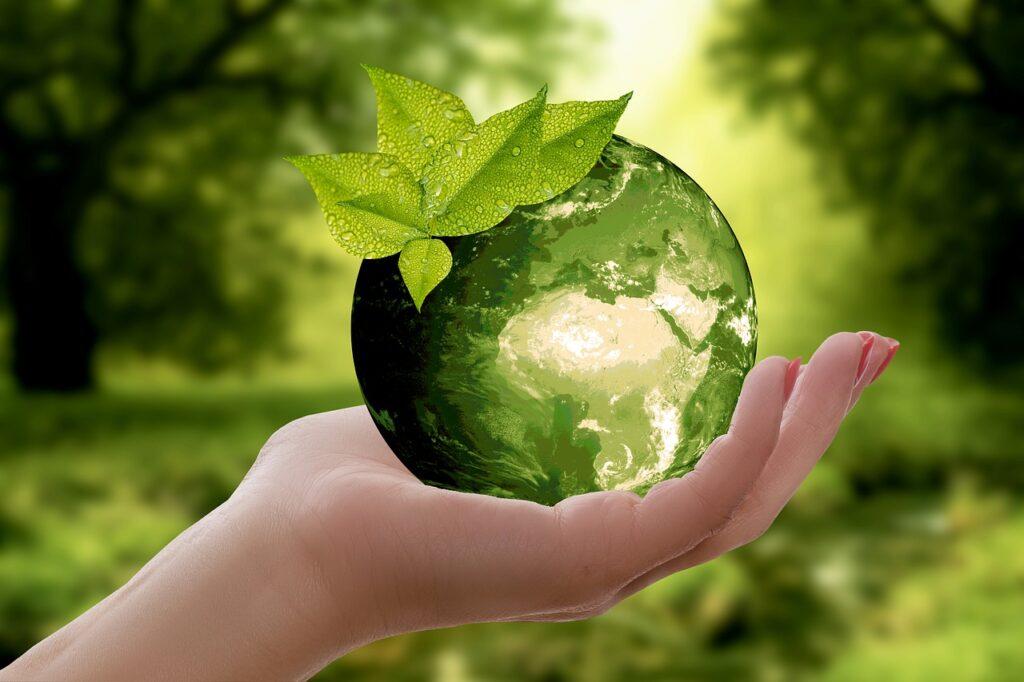 eco-délégué